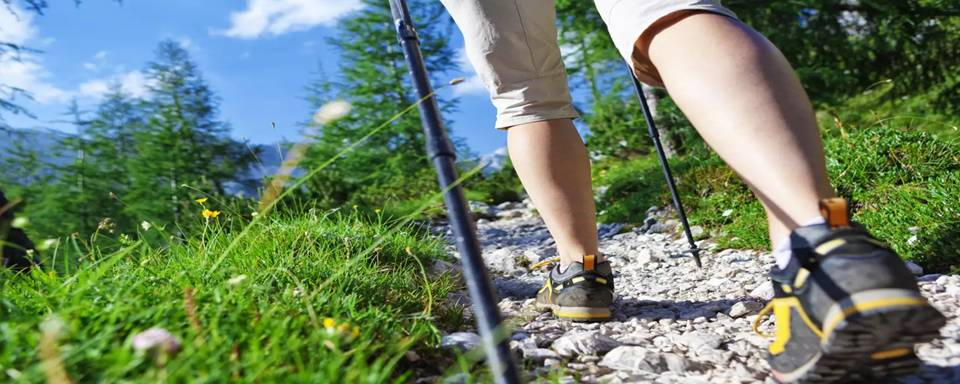 How to use a Walking Stick for Hiking