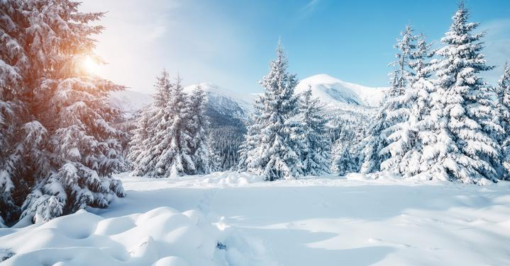 Tips on Finding a Great Ski & Snow Report App